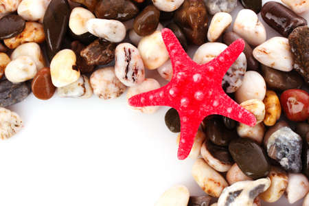 coral ocean: Red seastar on pebble background