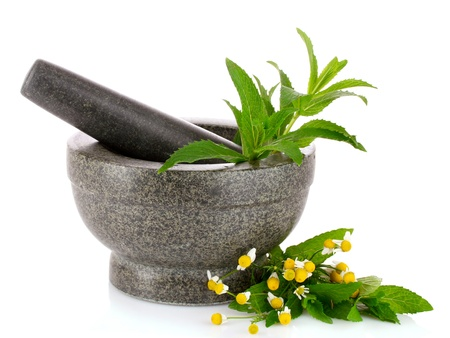 stone pestle and mortar with chamomile and mint isolated on white