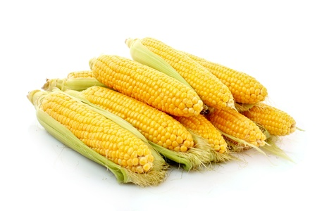 Few corn isolated on white photo