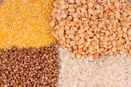 grains on  brown photo