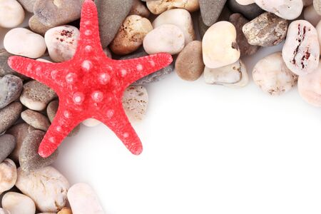 red pebble: Red seastar on pebble background