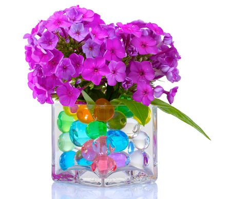 seed beads: beautiful flowers in vase with hydrogel isolated on white