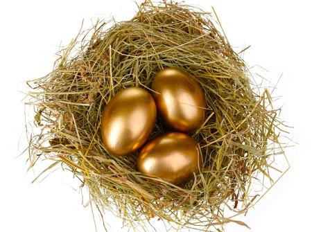 huevos de oro: huevos de oro en el nido aislado en blanco Foto de archivo