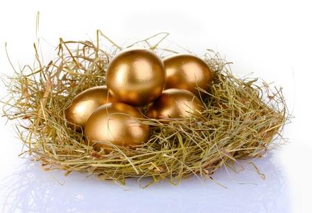 ?ufs d'or dans un nid isolé sur blanc