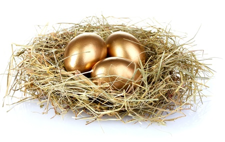 nest egg: golden eggs in nest isolated on white