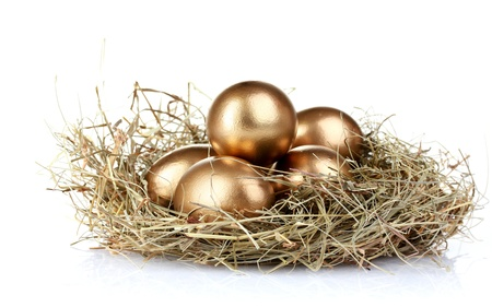 gold eggs: golden eggs in nest isolated on white