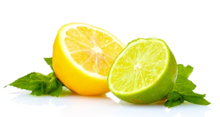 lime slice: fresh lime, lemon and mint isolated on white