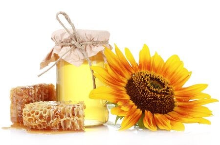 beautiful combs, honey and sunflower isolated on white photo