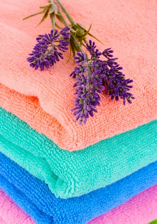 terry towels and lavender isolated on white photo