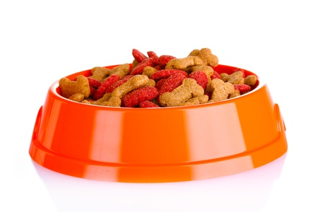 dog food in bowl isolated on white photo