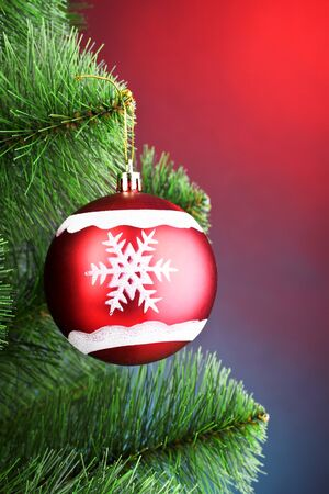 beautiful Christmas red ball on fir tree photo