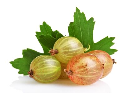 fresh gooseberries and leaves isolated on white photo