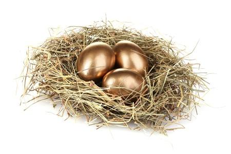 bird nests: golden eggs in nest isolated on white