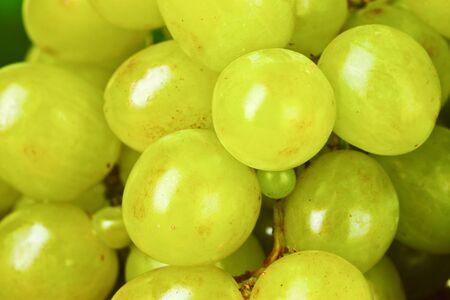 Ripe green grapes close-up Stock Photo - 10438281