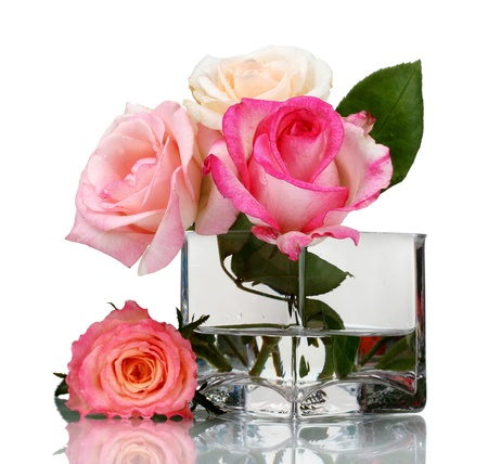 vase color: Beautiful roses in transparent vase isolated on white Stock Photo