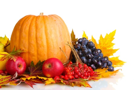 fruit harvest: beautiful autumn harvest and leaves isolated on white