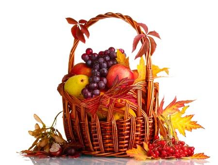 la cosecha de otoño hermoso en la canasta y las hojas aisladas en blanco Foto de archivo