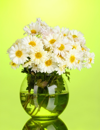 beautiful bouquet of daisies in vase on green background photo
