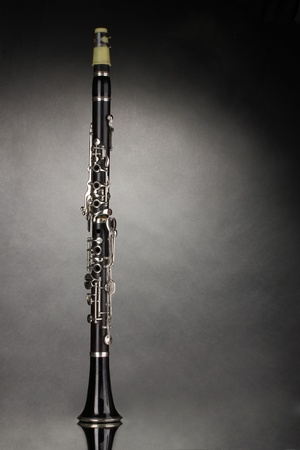 clarinet: beautiful clarinet on a gray background
