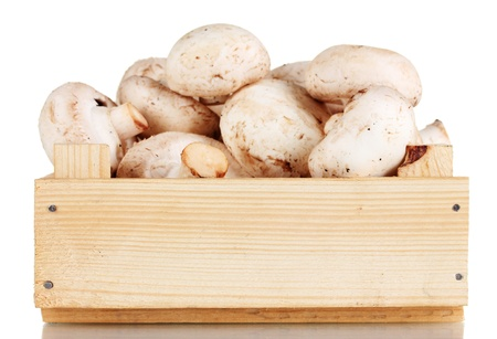 fresh mushrooms in a wooden box isolated on white photo