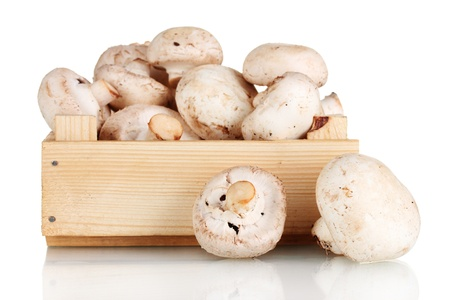 mushrooms: fresh mushrooms in a wooden box isolated on white Stock Photo