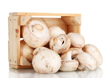 fresh mushrooms in a wooden box isolated on white Stock Photo - 11192713