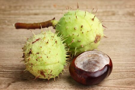 green and brown chestnuts on wooden background Stock Photo - 11195233