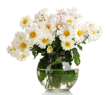 bunch up: beautiful bouquet of daisies in vase isolated on white Stock Photo