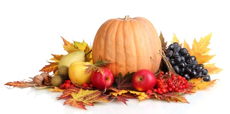 the fruitful: beautiful autumn harvest and leaves isolated on white