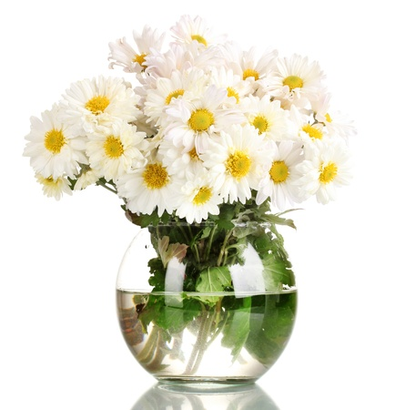 daisy stem: beautiful bouquet of daisies in vase isolated on white Stock Photo