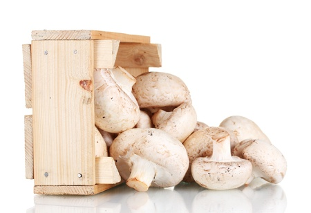 fresh mushrooms in a wooden box isolated on white Stock Photo - 11288630