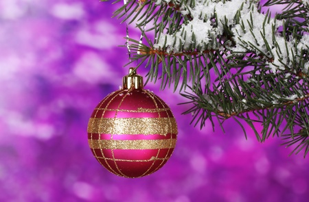 Christmas ball on the tree on purple photo