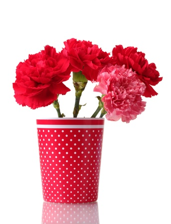 Bouquet of carnations in a glass isolated on white Stock Photo - 11511988
