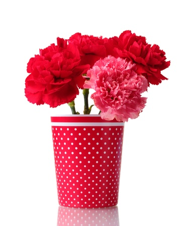 Bouquet of carnations in a glass isolated on white Stock Photo - 11512044