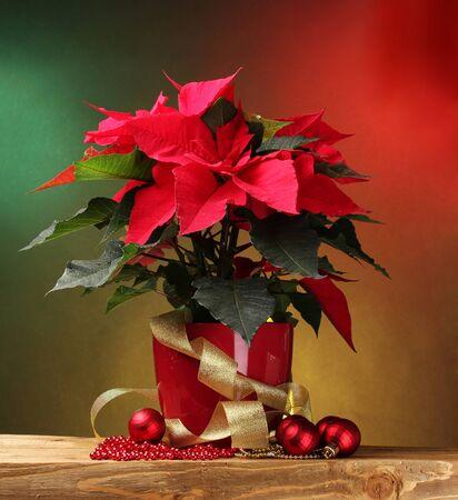 flor de pascua: poinsettia hermosa en maceta, regalos y bolas de Navidad en la mesa de madera sobre fondo brillante
