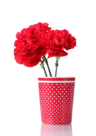 Bouquet of carnations in a glass isolated on white Stock Photo - 11724858