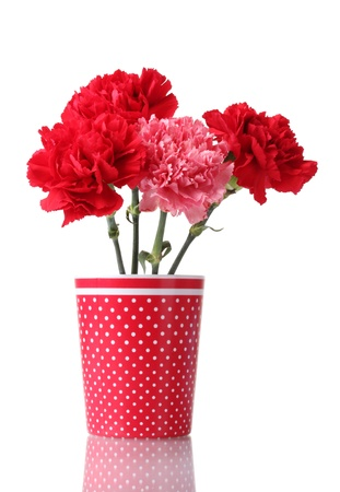 Bouquet of carnations in a glass isolated on white Stock Photo - 11724957