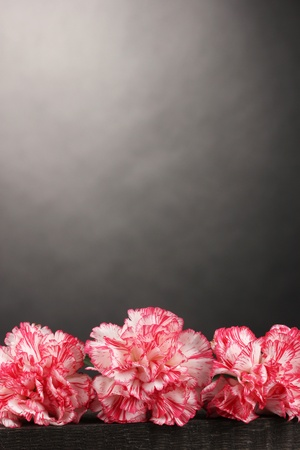 Beautiful carnations on wooden table on grey background Stock Photo - 11726299