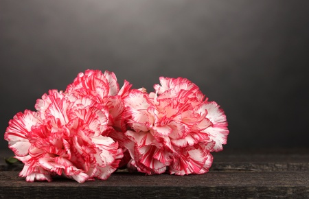 Beautiful carnations on wooden table on grey background Stock Photo - 11726201