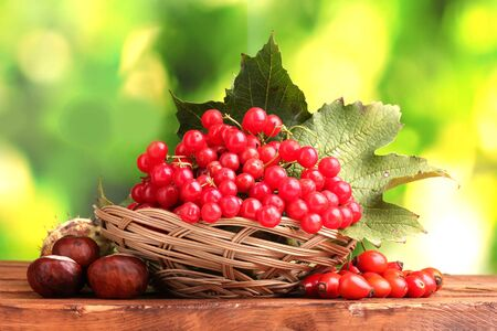 viburnum in basket, chestnuts and briar on wooden table on green background photo