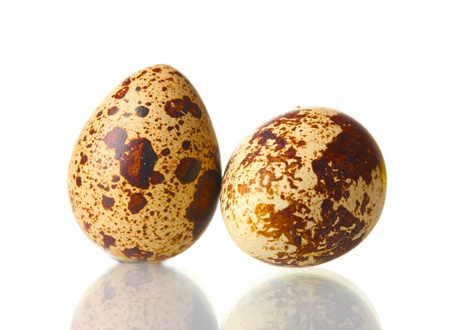 isilated: two quail eggs isilated on white