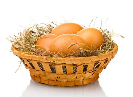 chicken egg: chicken eggs in a nest isolated on white Stock Photo
