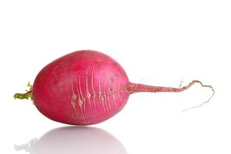 Fresh radishes isolated on white
