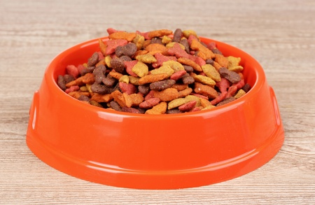 Dry cat food in bowl on wooden background photo