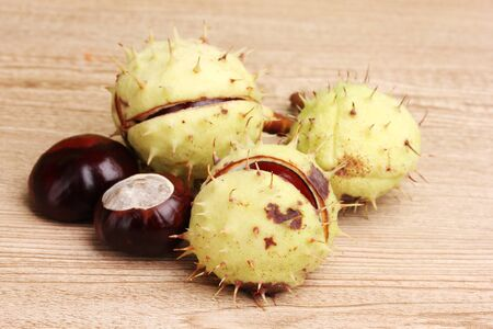 green and brown chestnuts on wooden background photo