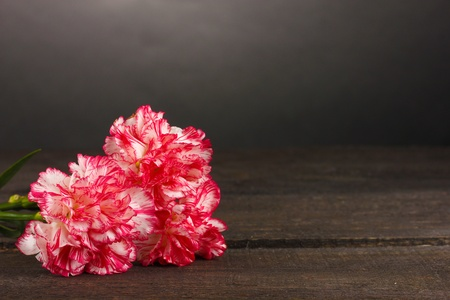 Beautiful carnations on wooden table on grey background