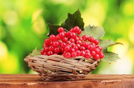 red berries of viburnum in basket on wooden table on green background photo