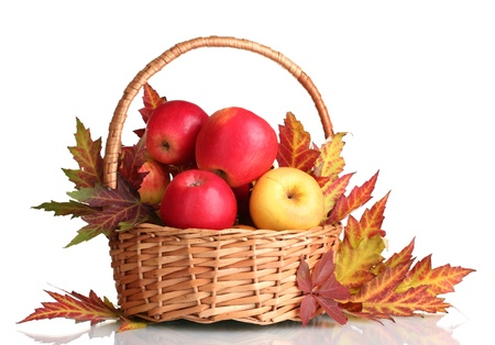 apples basket: beautiful autumn harvest in basket and leaves isolated on white