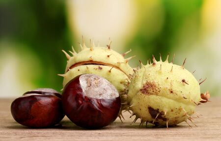 green and brown chestnuts on wooden table on green background photo