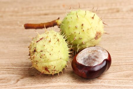 green and brown chestnuts on wooden background Stock Photo - 12098607
